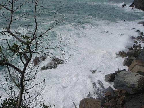 白いクリームみたいな波