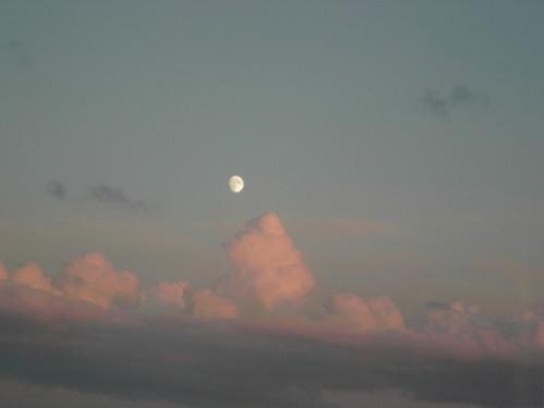 キレイな月!