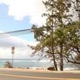 海がめがいたビーチ