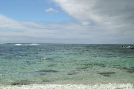 ハワイの海ですよー