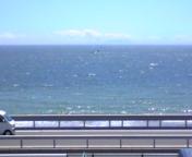 海は見ているだけで(^-^)